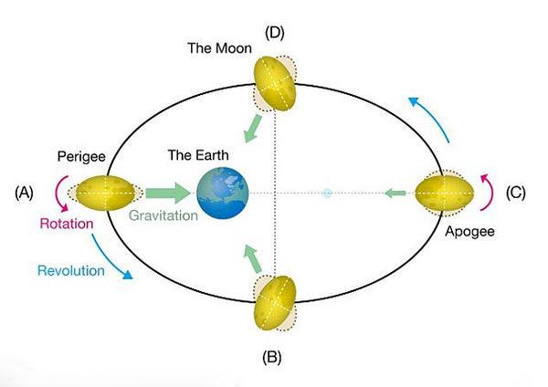 Орбита Земли и Луны