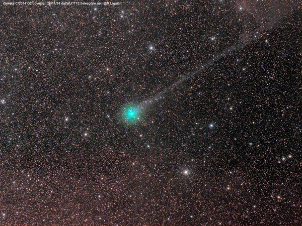 Комета C2014 Q2 Лавджоя. Автор Rolando Ligustri, снято в Австралии