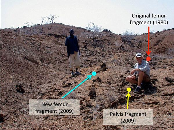 На месте Кооби-Фора в Кении, где были обнаружены древние окаменелости.